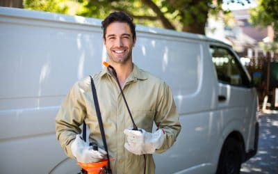 The 3 Principles Every Pest Control Advertiser Has To Know